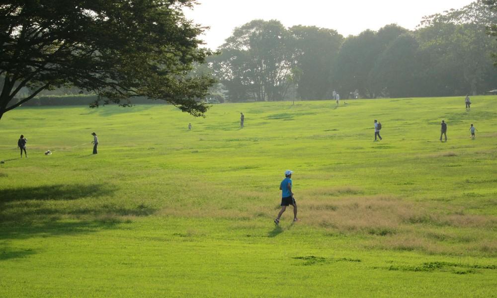 自分らしく走る道 高橋尚子さんが推薦するランニングコース 昭和の森を走ってきたよー!