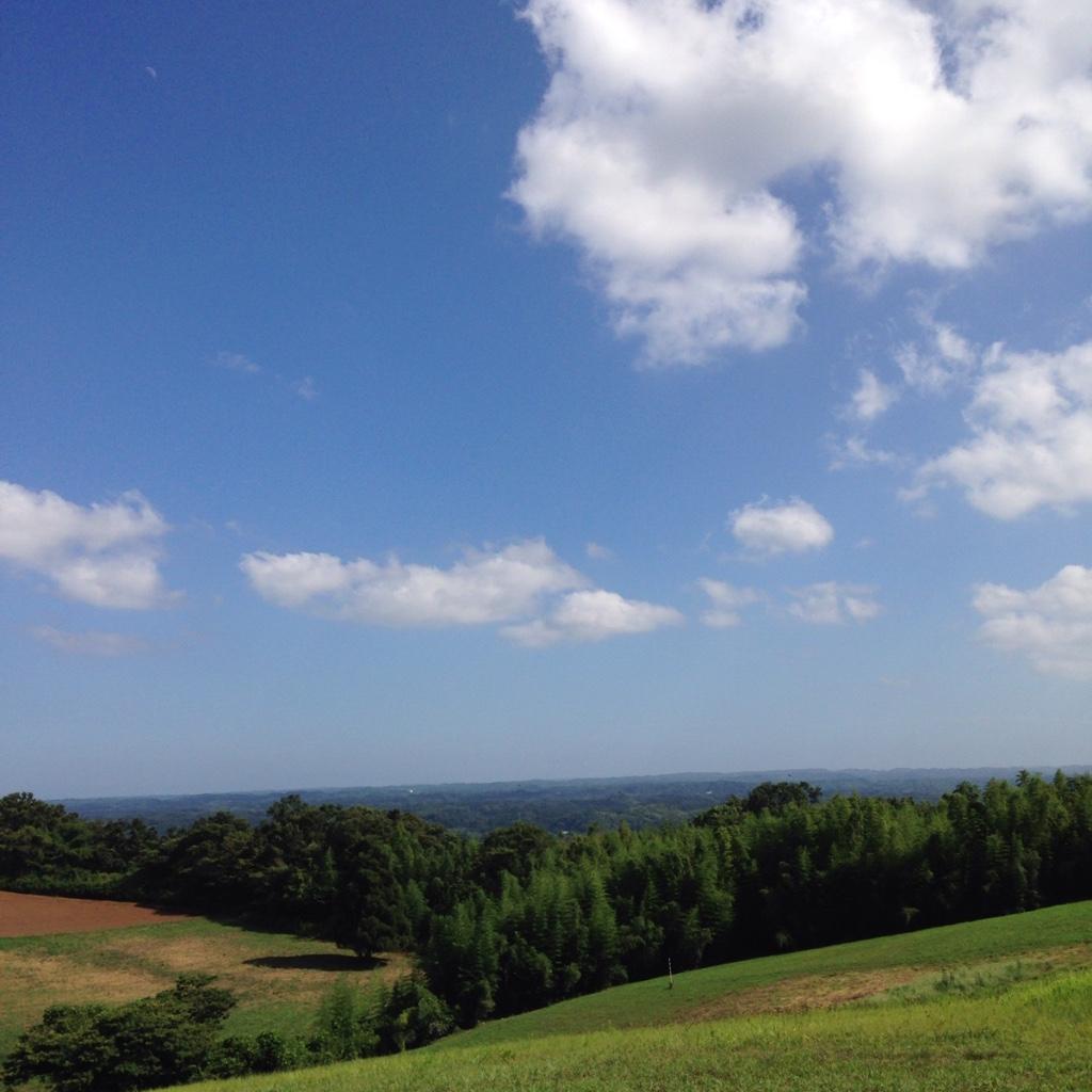 長柄町の秋元牧場に絶景ポイントが!この牧場無料なんです、家族連れは絶対行くべし!!